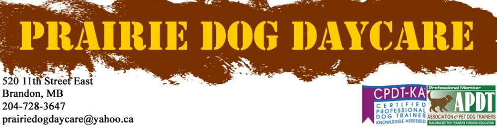 Prairie Dog Daycare